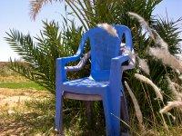 Bleu d'Egypte, 50x37,5 Tirages coton limités