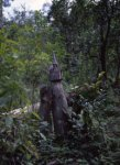 waka des bois, 140x90, tirages limités